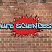 Grade 12z Life Science essays 2017